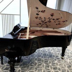 Piano Cao Cấp